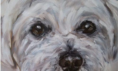 Quadro de cachorro: porque ter um?